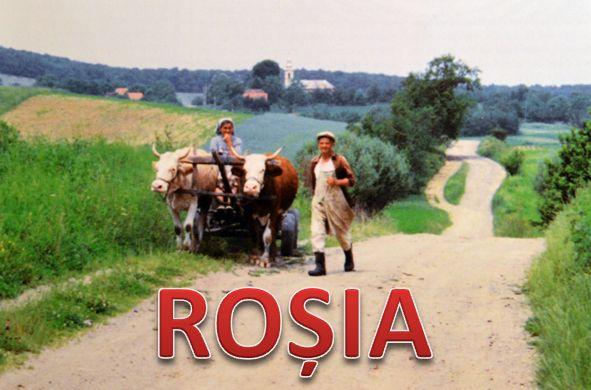 Rosia 1