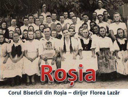 Rosia 3