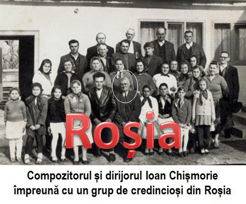 Rosia 5